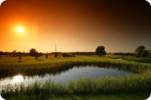 The Wiltshire Gardens